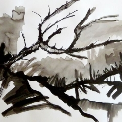 DIE BLAUEICHE/THE BLUE OAK. 2010. ink and ink brush on handmade paper. 42 x 30 cm