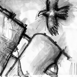 AMAGEDDON. 2008. charcoal and ink on paper. 33 x 24 cm. drama illustration