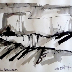 IM HOCHMOOR/IN THE UPLAND MOOR. 2010. ink and ink brush on handmade paper. 30 x 21 cm