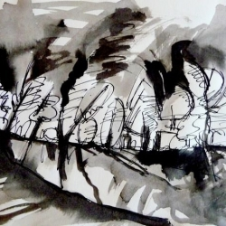 LASZIENKI PARK V. 2010. ink and ink brush on handmade paper. 30 x 21 cm